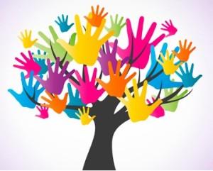 Colaboracion Voluntarios