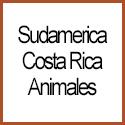 Costa Rica Animales