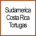 Costa Rica Tortugas