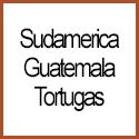 Guatemala Tortugas